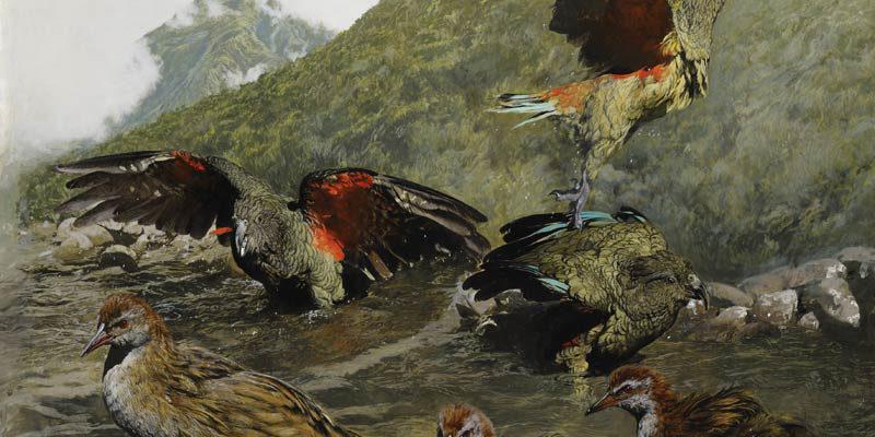 Ray Ching at Tauranga Art Gallery